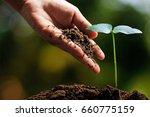 hands of farmer growing and... | Shutterstock . vector #660775159