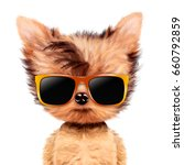 funny adorable doggy girl with... | Shutterstock . vector #660792859