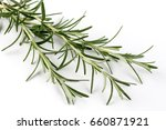 fresh rosemary branches... | Shutterstock . vector #660871921