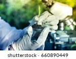 close up of biologist's hand... | Shutterstock . vector #660890449
