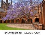 sydney  australia  october 31 ... | Shutterstock . vector #660967204