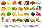 set of berries and fruits on a... | Shutterstock .eps vector #661003999
