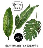 vector exotic leaves set | Shutterstock .eps vector #661012981