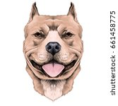 dog breeds the american pit... | Shutterstock .eps vector #661458775