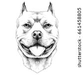 dog breeds the american pit... | Shutterstock .eps vector #661458805