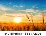 sunset or sunrise landscape... | Shutterstock . vector #661472101