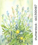 blue wildflowers in watercolor. ... | Shutterstock . vector #661500487