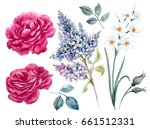watercolor floral set  red rose ... | Shutterstock . vector #661512331