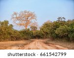 sri lanka   the road through... | Shutterstock . vector #661542799