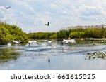 beautiful landscape photo of... | Shutterstock . vector #661615525
