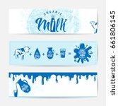 vector illustration of fresh... | Shutterstock .eps vector #661806145