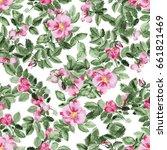 watercolor pink briar blossom... | Shutterstock . vector #661821469