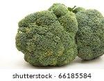 broccoli of in front   Shutterstock . vector #66185584