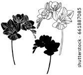 freesia flowers   vector... | Shutterstock .eps vector #661887085
