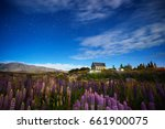 lupine field at the church of... | Shutterstock . vector #661900075