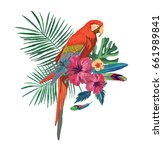 vector illustration with macaw... | Shutterstock .eps vector #661989841
