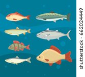 isolated river fish. set of... | Shutterstock .eps vector #662024449