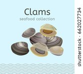 clams on a light background.... | Shutterstock .eps vector #662027734