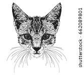cat. vector illustration. | Shutterstock .eps vector #662089801