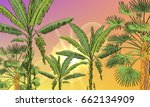 vector drawn exotic background... | Shutterstock .eps vector #662134909