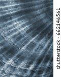 organic texture  sea shell... | Shutterstock . vector #662146561