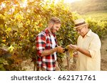 smiling father and his son is... | Shutterstock . vector #662171761