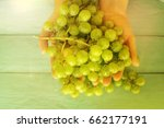 woman with handful of green... | Shutterstock . vector #662177191