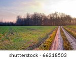 road  ground road under fluffy... | Shutterstock . vector #66218503