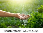 water pouring in woman hand on... | Shutterstock . vector #662216851