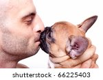 beautiful little french bulldog ... | Shutterstock . vector #66225403