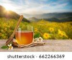 honey bee in glass jar with... | Shutterstock . vector #662266369