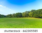 green trees in beautiful park... | Shutterstock . vector #662305585