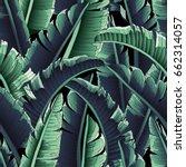 seamless tropical pattern.  ... | Shutterstock .eps vector #662314057
