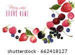 vector fruit banner with mix of ... | Shutterstock .eps vector #662418127