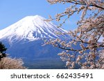 mount fuji with cherry blossom... | Shutterstock . vector #662435491