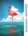 Flamingo Standing On The Sea...