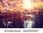 blurred background orange... | Shutterstock . vector #662502907