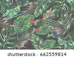 tropical palm leaves  jungle... | Shutterstock .eps vector #662559814