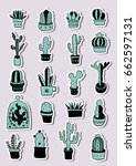hand drawn green cactus and... | Shutterstock .eps vector #662597131