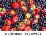 berries variety   berries...   Shutterstock . vector #662609671