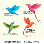 modern set . colorful birds ... | Shutterstock .eps vector #662627941