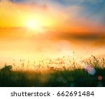 world environment day concept ... | Shutterstock . vector #662691484