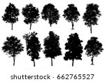 collection of silhouette of... | Shutterstock . vector #662765527