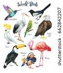 set of hand painted birds....   Shutterstock . vector #662842207