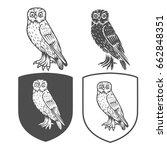 vector heraldic shields with... | Shutterstock .eps vector #662848351