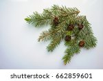branch of christmas tree and... | Shutterstock . vector #662859601