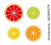 collection of citrus slices     ... | Shutterstock .eps vector #662890279