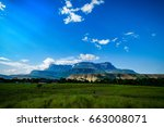 the great savannah  venezuela.... | Shutterstock . vector #663008071