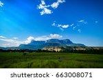 the great savannah  venezuela.... | Shutterstock . vector #663008071