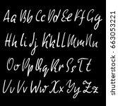 hand drawn elegant calligraphy... | Shutterstock .eps vector #663053221